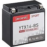 Accurat Motorradbatterie YTX14-BS 14Ah 200A 12V AGM Starterbatterie in Erstausrüsterqualität leistungsstark rüttelfest ABS geeignet wartungsfrei